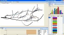 GXY-A根系原位监测系统