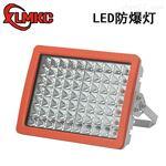 100W粉尘LED防爆灯