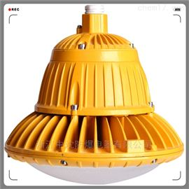 BAD85-100W 防爆壁挂式灯 中沈防爆