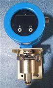 液氧流量計型號