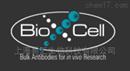 抗原BioX cell单克隆抗体和重组蛋白授权代理