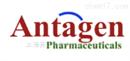 Antagen 抗体分型检测试剂盒 授权代理