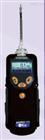 ppbRAE 3000 VOC检测仪