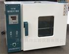 101-3E中草药灯头电热恒温鼓风烤箱干燥箱