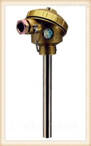 WRNK-212装配式热电偶