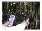 北京植物葉面、群體溫度分析儀