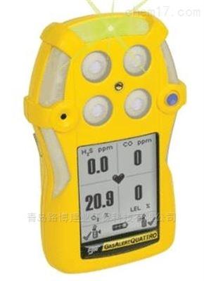 QT系列加拿大BW   QT系列四合一气体检测仪总代