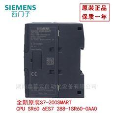 株洲(总公司)西门子PLC模块*