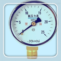 Y-63B-F304不锈钢压力表