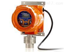 Flamgard Plus隔爆型含铅汽油蒸汽检测仪