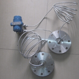 智能雙法蘭液位變送器結構