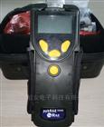 PGM-7340华瑞手持式PID/VOC检测仪pgm-7340