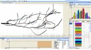 绿博根系分析系统