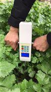 绿博小麦硬度仪