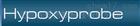 Hypoxyprobe授权代理