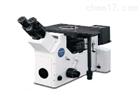 尼康倒置显微镜MA-100