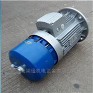 工廠直銷紫光剎車電機BMA7124