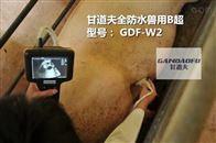 高清猪用B超报价便宜母猪B超多少钱