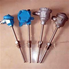 WZ-热电阻/热电偶