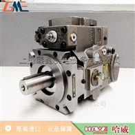 V60N 110 RSUN1-0-03/LSN-1供应hawe哈威V60N柱塞泵