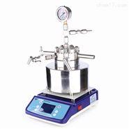 磁力攪拌高壓反應釜