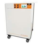 RW-2型二氧化碳/CO2培养箱