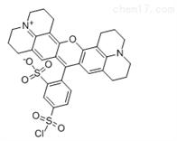 cas82354-19-6磺基罗丹明101磺酰氯/荧光标记