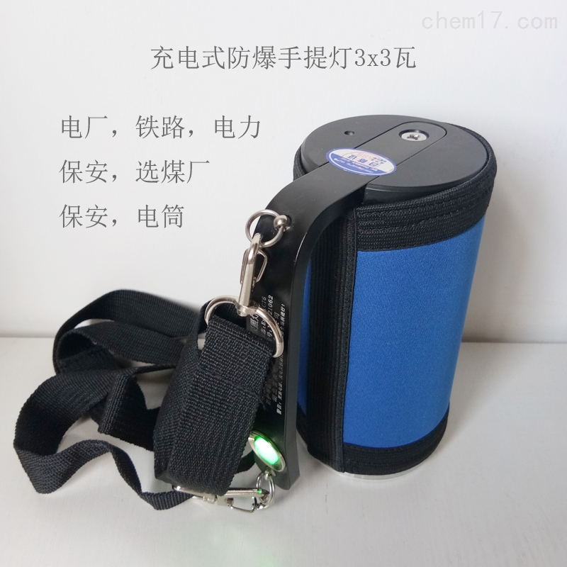 TZ1211蓄电式应急电池低压防爆手提灯12V