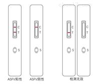 非洲猪瘟病毒抗原胶体金测试卡说明书