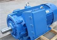 盼乐电气Brinkmann水泵TL144/300+750