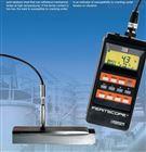 铁素体检测仪德国菲希尔 MP30E-S