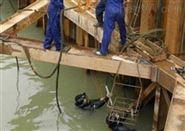 大理白族潜水服务公司-水下服务