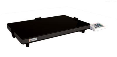 DW-12F/24F智能微晶玻璃电热板