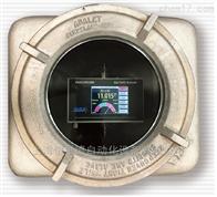 GPA 2000美国CAI汽车尾气检测分析仪防爆型