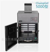 ChampGel™ 6000凝胶成像分析系统