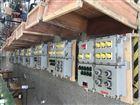 BLD202LED防爆(节能)应急灯