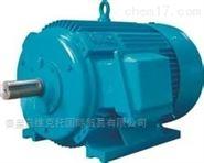 高成偉優勢供應法國HYDRO-LEDUC泵