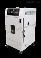 RLH-100廠家直銷換氣老化試驗箱
