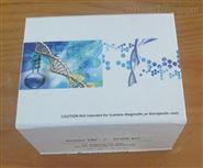 磁珠法基因組提取試劑盒(DP329)