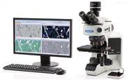 奧林巴斯BX53M顯微鏡olympusBX53M促銷總代