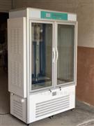 細菌培養箱恒溫