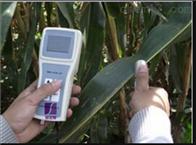 植物叶片温差测定仪SYE-YW01