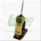 PGM-1600泵吸式可燃气检测仪-厂家现货