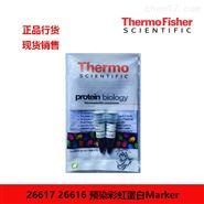 thermo 预染彩虹蛋白Marker 26617 26617