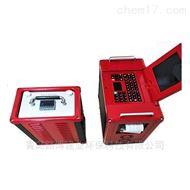 LB-3010非分散红外烟气分析仪 内置打印机