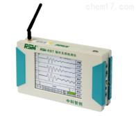 RSM-RBTRSM-RBT 锚杆无损检测仪