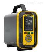 LB-MT6X泵吸式多气体分析仪--电子鼻
