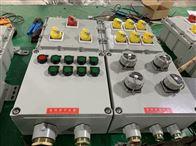 BXX53防爆檢修配電箱|德力西元器件報價