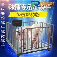 内蒙古2吨称牛地磅/养殖场带围栏电子磅