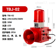 TBJ-02声光报警器专用